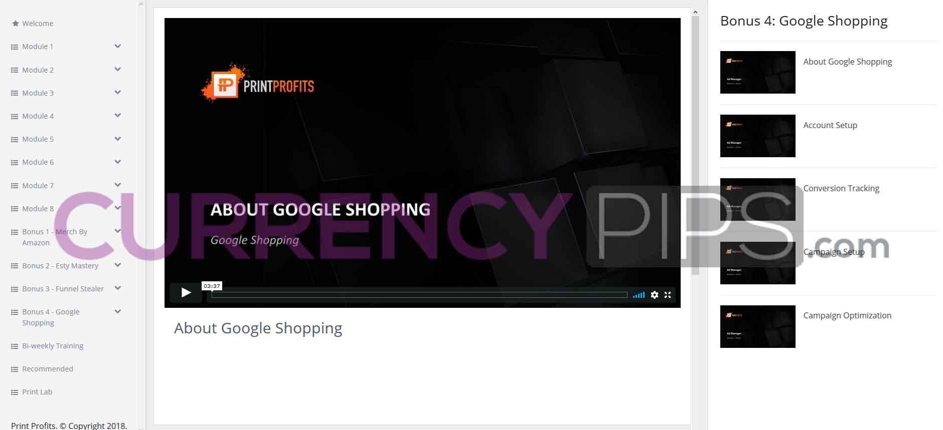 bonus google shopping